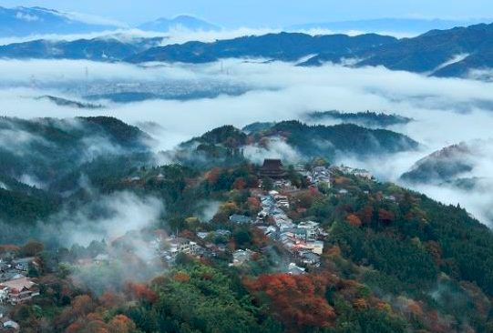 An introduction to Yoshinoyama